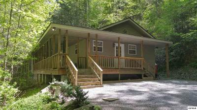 Gatlinburg Single Family Home For Sale: 379 Norton Creek Road
