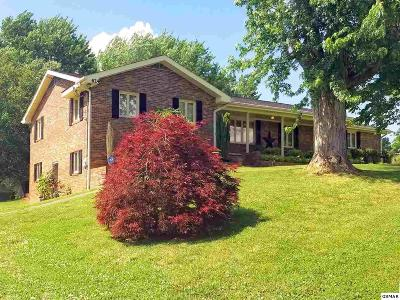 Dandridge Single Family Home For Sale: 624 Hwy 139