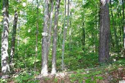 Sevierville TN Residential Lots & Land For Sale: $15,000
