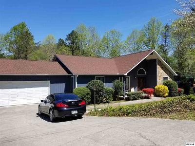 Single Family Home For Sale: 260 E Leatherwood Dr