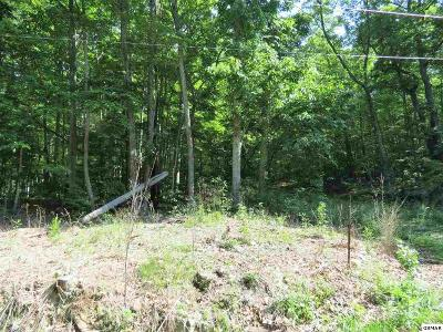 Sevierville TN Residential Lots & Land For Sale: $30,000