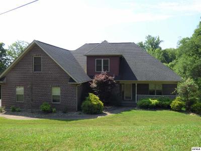 Dandridge Single Family Home For Sale: 2104 Bridge View Dr.