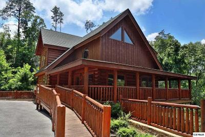 Sevierville Single Family Home For Sale: 2150 Bear Haven Way
