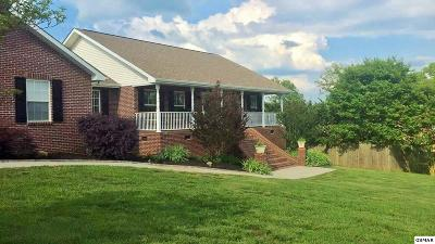 Sevierville Single Family Home For Sale: 1520 Tomahawk View Drive