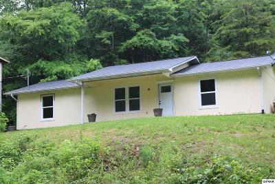 Sevierville Single Family Home For Sale: 2247 Fawn View Dr