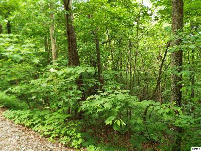 Residential Lots & Land For Sale: Lot 11 Overholt Trail