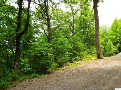 Residential Lots & Land For Sale: Lot 10 Overholt Trail