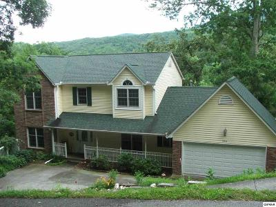 Gatlinburg Single Family Home For Sale: 354 Gatlin Dr