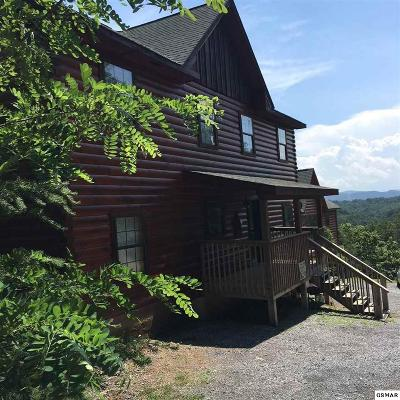 Sevierville Single Family Home For Sale: 1670 Kissing Way