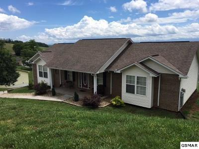 Kodak Single Family Home For Sale: 422 Troy Cate Rd