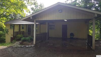 Sevierville Single Family Home For Sale: 435 Hemlock Lane