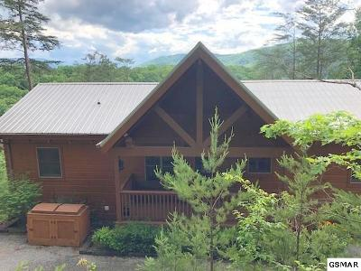 Sevierville Single Family Home For Sale: 2980 Mountain Memories Way