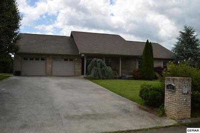Sevierville Single Family Home For Sale: 1437 Benjamin Blvd