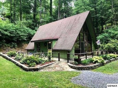Gatlinburg Single Family Home For Sale: 338 Bruce Rd