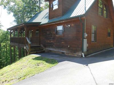 Sevierville Single Family Home For Sale: 2010 Bird Ridge