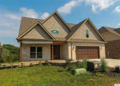 Dandridge Single Family Home For Sale: 705 Waters Edge