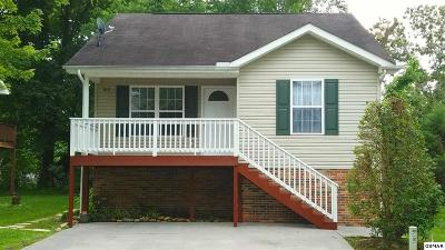 Sevier County Single Family Home For Sale: 818 Plantation Dr