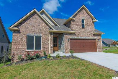 Dandridge Single Family Home For Sale: 709 Waters Edge