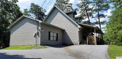 Pigeon Forge Single Family Home For Sale: 847 Lloyd Huskey Rd