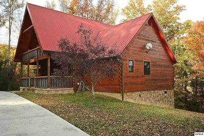 Sevierville Single Family Home For Sale: 3002 Waldens Creek