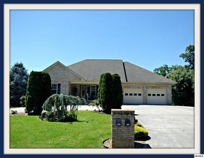 Dandridge Single Family Home For Sale: 1159 Country Club Rd.