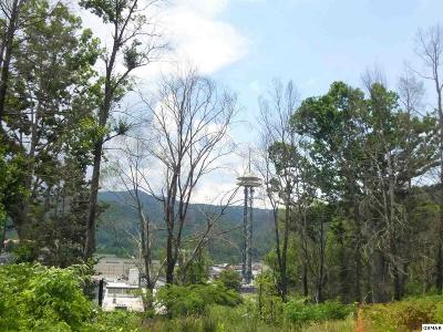 Gatlinburg TN Residential Lots & Land For Sale: $300,000