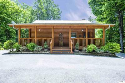 Gatlinburg Single Family Home For Sale: 1165 Ogle Hills Rd