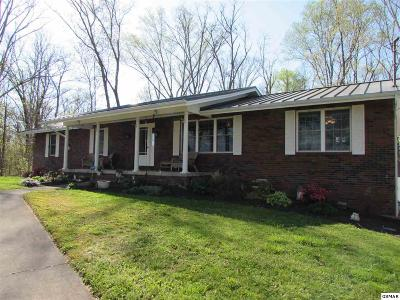 Sevierville Single Family Home For Sale: 1889 Walnut Grove Rd