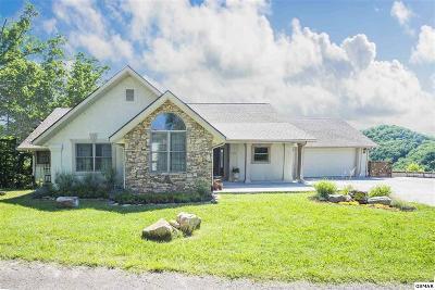 Sevierville Single Family Home For Sale: 710 John Sevier Dr