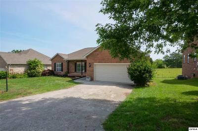 Maryville Single Family Home For Sale: 1064 Saint Johns Dr