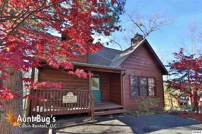 Gatlinburg Single Family Home For Sale: 446 Silver Maple Ln