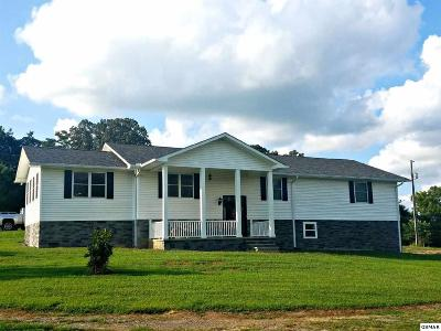 Dandridge Single Family Home For Sale: 1117 Zirkle Rd.
