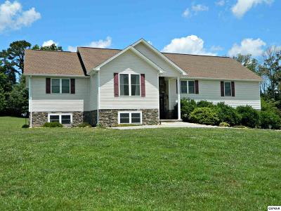 Dandridge Single Family Home For Sale: 1121 Zirkle Rd.