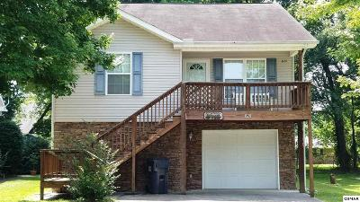 Pigeon Forge Single Family Home For Sale: 820 Plantation Dr