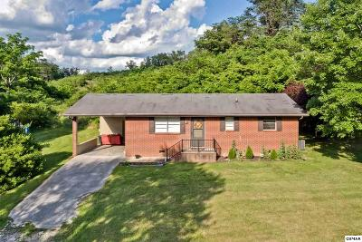 Sevier County Single Family Home For Sale: 830 Whites School Rd