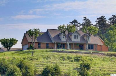 Sevierville Single Family Home For Sale: 1634 Waldens Creek Road