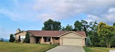 Kodak Single Family Home For Sale: 3287 River Pointe Cir