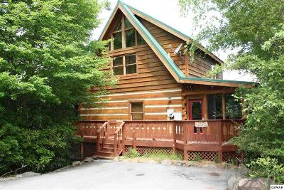 Sevier County Single Family Home For Sale: 3729 Cinnamon Way