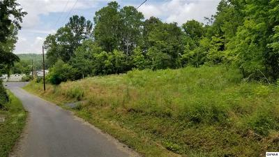 Sevierville TN Commercial For Sale: $40,000