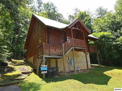 Sevierville Single Family Home For Sale: 1429 Cupid Way