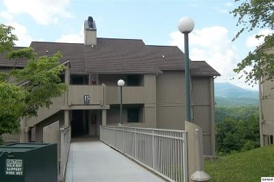 Gatlinburg Condo/Townhouse For Sale: 3710 Weber Rd B-104