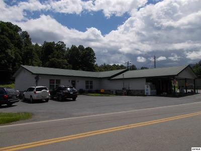 Cocke County Commercial For Sale: 790 Highway 107 S
