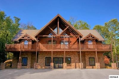 Pigeon Forge Single Family Home For Sale: 305 Alpine Mountain Way