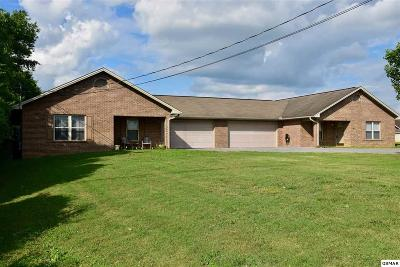 Sevierville Multi Family Home For Sale: 2916 Boyds Creek Hwy