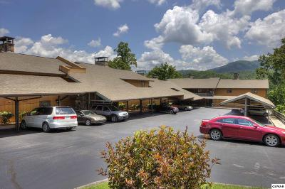 Gatlinburg Condo/Townhouse For Sale: 1824 Oriole Rd. Unit 314