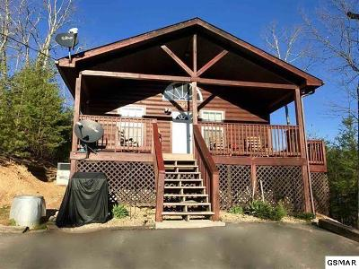 Sevierville Single Family Home For Sale: 1410 Little Cove Church Rd