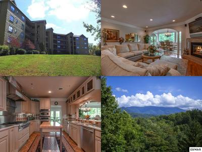 Gatlinburg Condo/Townhouse For Sale: 338 Pinnacle View Way