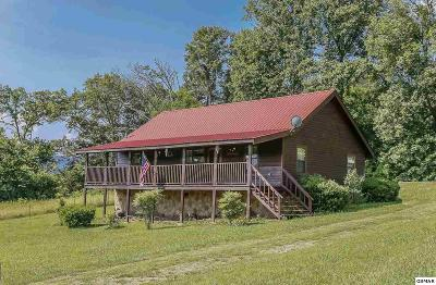 Sevierville Single Family Home For Sale: 3018 Hatcher Mountain Rd