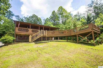 Sevierville Single Family Home For Sale: 4262 Evans Chapel Rd