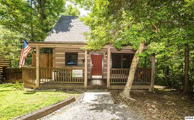 Sevierville Single Family Home For Sale: 1918 Charles Lewis Way